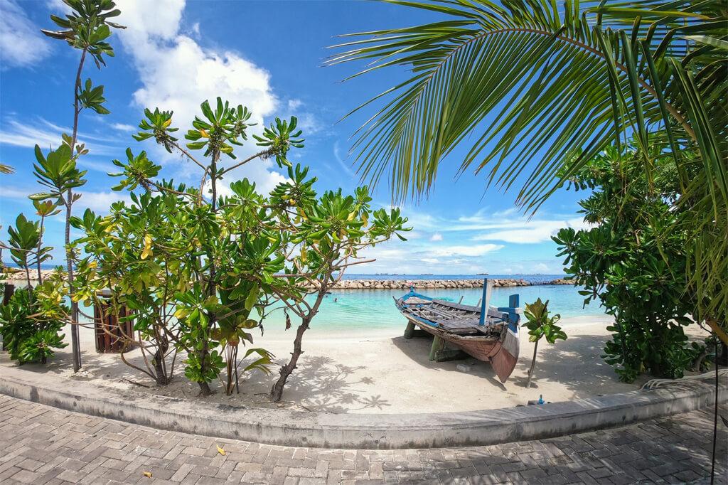 local island maldives